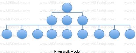 hiyerarsik yonetim modeli burokrasi